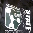 2011 Cheerleading State Championships