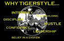 TIGERSTYLE Preseason Training Video
