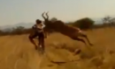 Mountain Biker VS Buck: Only in Africa
