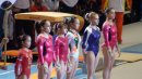 Women s All Around Leotards