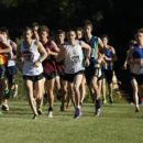 2011 NSW Short Course Cross Country Championships