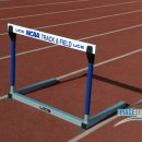 HURDLE2 12NCAADIII KL