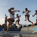 WOMEN STEEPLE3 12NCAAKL