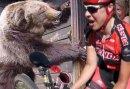 "Amanda Carey ""Stand off with a BEAR"""
