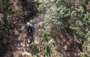 Pisgah Stage Race
