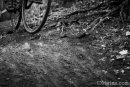Hyattsville CX 2012