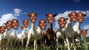 Mo-GOAT & XC Predictions that will make you sick