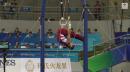 Jake Dalton - Still Rings - 2014 World Championships - Mens Team Final